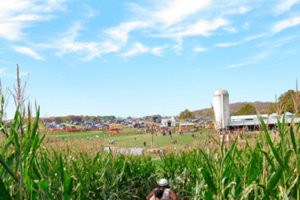 Family Festival @ the Farm – Self-Guided Farm Tour Set for October 21st and 22nd